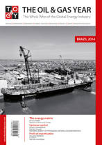 The Oil & Gas Year Brazil 2014 book cover
