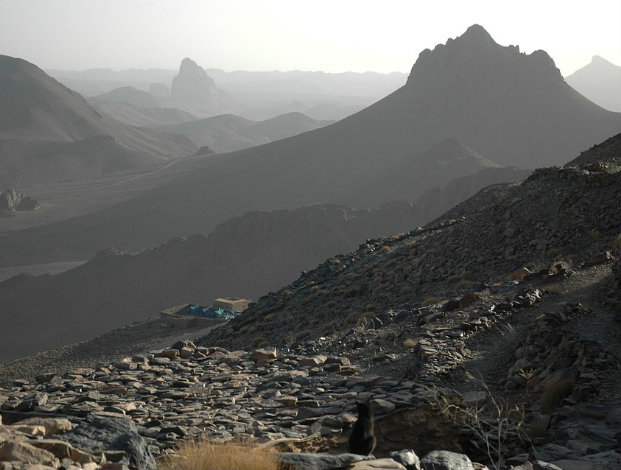 Statoil facility in Algeria attacked
