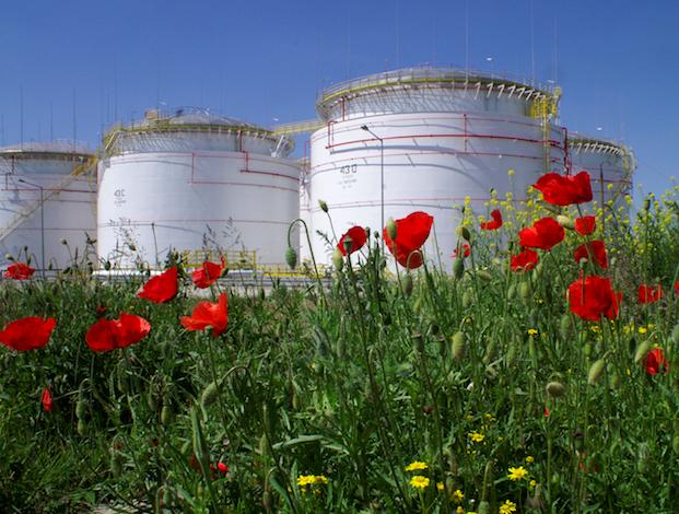 Poland eyes merging refiners